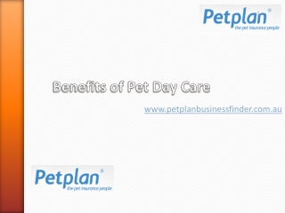 Benefits of Pet Day Care