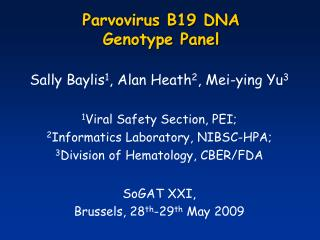 Parvovirus B19 DNA  Genotype Panel