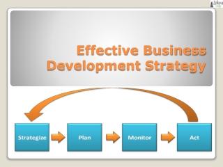 Effective Business Development Strategy