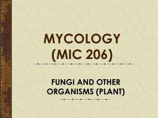 FUNGI AND OTHER ORGANISMS PLANT
