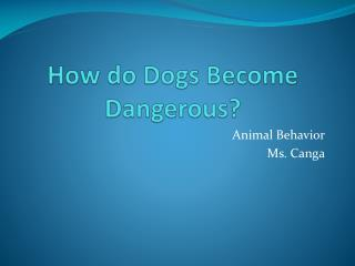 How do Dogs Become Dangerous
