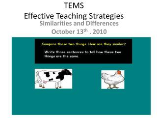 TEMS Effective Teaching Strategies