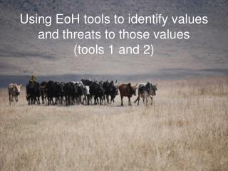 Using EoH tools to identify values and threats to those values tools 1 and 2