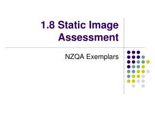1.8 Static Image Assessment