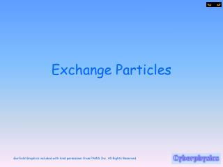 Exchange Particles