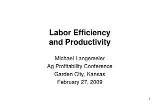 Labor Efficiency and Productivity