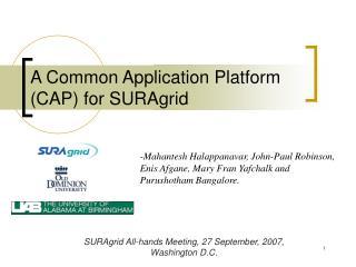 A Common Application Platform CAP for SURAgrid