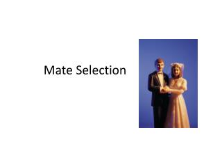 Mate Selection