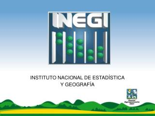 INSTITUTO NACIONAL DE ESTAD STICA Y GEOGRAF A