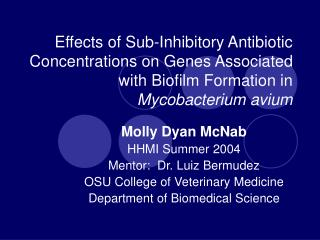 Effects of Sub-Inhibitory Antibiotic Concentrations on Genes Associated with Biofilm Formation in Mycobacterium avium