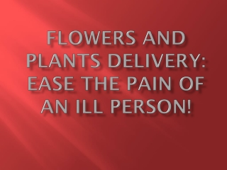 Flowers And Plants Delivery: Ease The Pain Of An Ill Person!