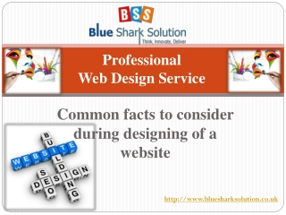 Common facts to consider during designing of a website