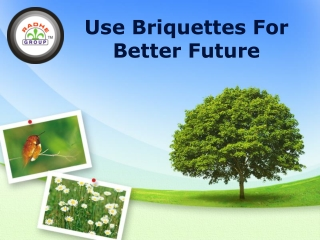 Use Briquettes For Better Future