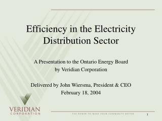 Efficiency in the Electricity Distribution Sector
