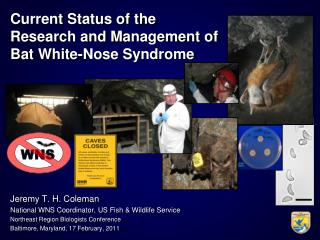 Current Status of the  Research and Management of Bat White-Nose Syndrome