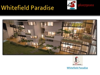 Whitefield Paradise