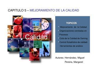 CAPITULO 5   MEJORAMIENTO DE LA CALIDAD