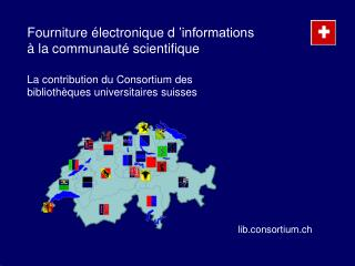Fourniture  lectronique d  informations   la communaut  scientifique  La contribution du Consortium des biblioth ques un