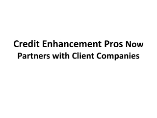 Credit Enhancement Pros Now Partners with Client Companies