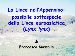 La Lince nell Appennino: possibile sottospecie della Lince euroasiatica Lynx lynx   di Francesco Mossolin