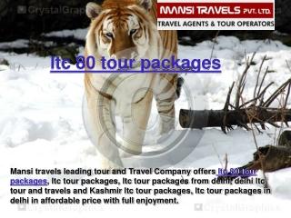 ltc 80 tour packages