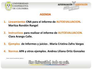 AGENDA   Lineamientos CNA para el informe de AUTOEVALUACION. Maritza Rond n Rangel  Instructivos para realizar el inform