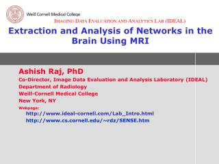Extraction and Analysis of Networks in the Brain Using MRI