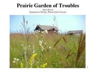 Prairie Garden of Troubles Bruno Borsari Department of Biology, Winona State University