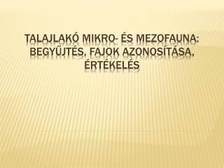 Talajlak  mikro-  s mezofauna: begyujt s, fajok azonos t sa,  rt kel s