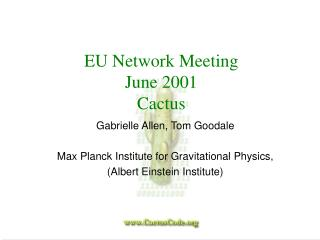 EU Network Meeting June 2001 Cactus