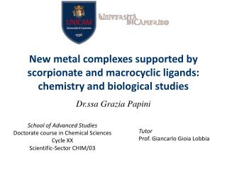 School of Advanced Studies Doctorate course in Chemical Sciences Cycle XX Scientific-Sector CHIM