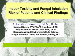 Indoor Toxicity and Fungal Inhalation Risk of Patients and Clinical Findings