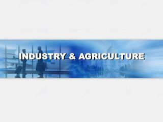 INDUSTRY  AGRICULTURE