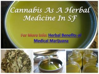 Cannabis As A Herbal Medicine In SF