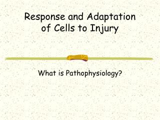 Response and Adaptation of Cells to Injury