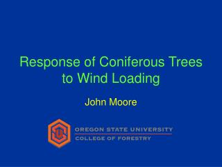 Response of Coniferous Trees to Wind Loading