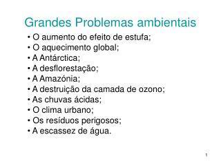 Grandes Problemas ambientais