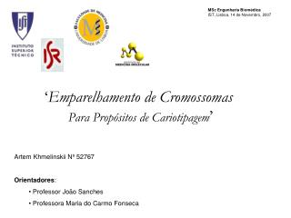 Emparelhamento de Cromossomas  Para Prop sitos de Cariotipagem