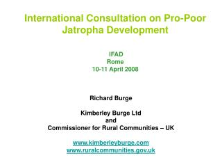 International Consultation on Pro-Poor Jatropha Development    IFAD Rome 10-11 April 2008