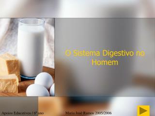 O Sistema Digestivo no Homem