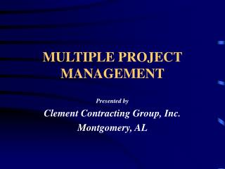 MULTIPLE PROJECT MANAGEMENT