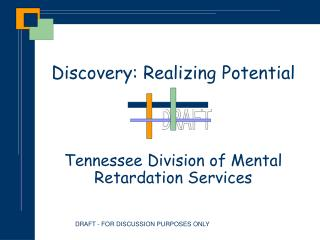 Discovery: Realizing Potential     Tennessee Division of Mental Retardation Services