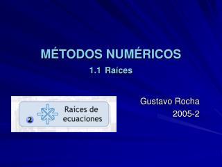 M TODOS NUM RICOS 1.1 Ra ces
