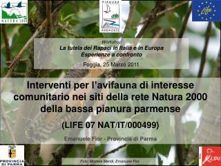 Interventi per l avifauna di interesse comunitario nei siti della rete Natura 2000 della bassa pianura parmense LIFE 07