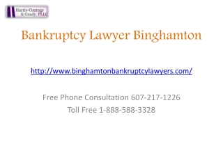 Chapter 7, Chapter 13, File Bankruptcy Lawyer Binghamton | D