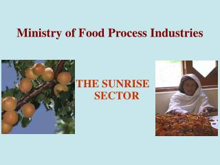 Ministry of Food Process Industries