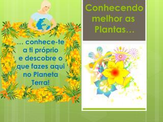 Conhecendo melhor as  Plantas