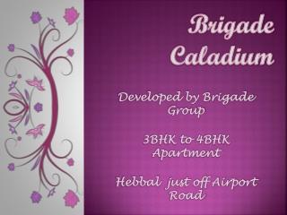 09999684905 Brigade Caladium Bangalore