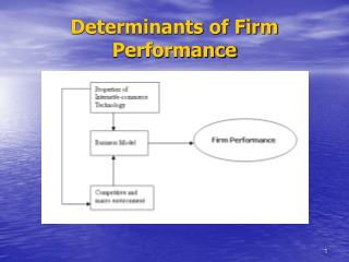 Determinants of Firm Performance