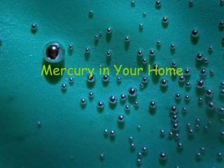 Mercury in Your Home